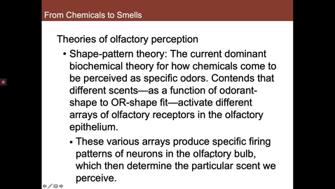 Thumbnail for entry Shape-Pattern vs Vibrational Theory