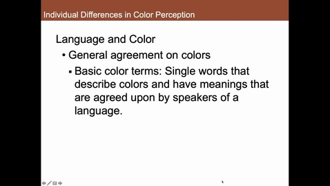 Thumbnail for entry Individual Differences in Color Perception