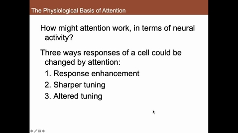 Thumbnail for entry The Physiological Basis of Attention