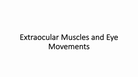 Thumbnail for entry Extraocular Muscles and Eye Movements