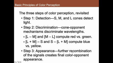 Thumbnail for entry Steps of Color Processing Summary