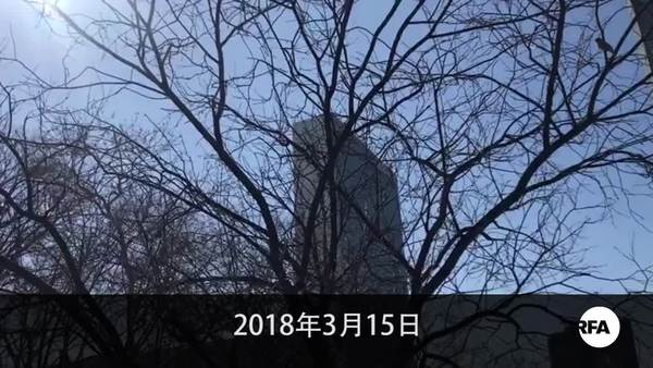 全球18城市維族人遊行集會  抗議中國監控打壓