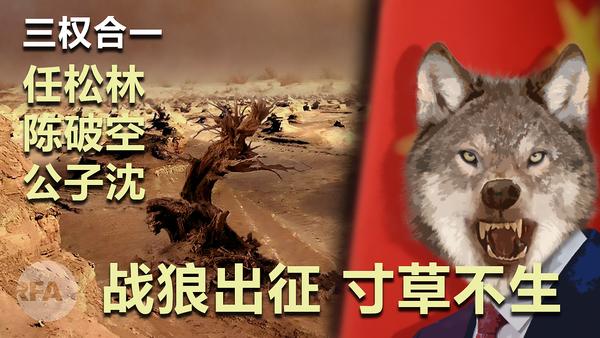 戰狼出征、寸草不生|三權合一
