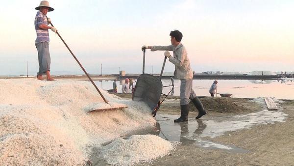 Vietnam Salt Farmers Battered by Climate