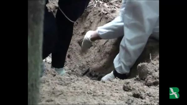 Malaysia Finds Graves, Smuggling Camps on Northern Border