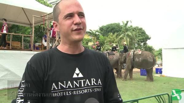 ช้างเล่นโปโลอย่างครึกครื้นที่สนามในกรุงเทพฯ