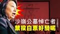 【香港醒晨】沙嶺公墓悼亡者,禁投白票好騎呢