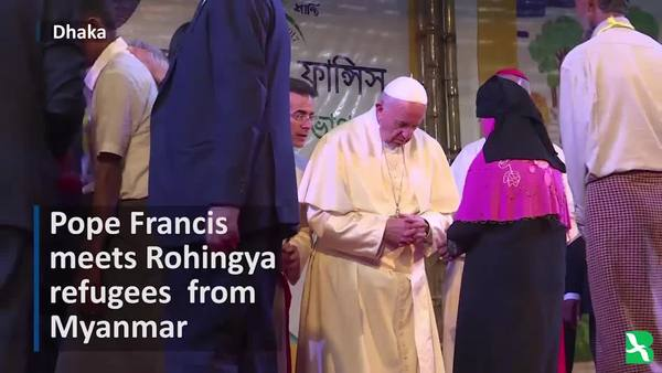 Pope Apologizes for Suffering of Rohingya Muslims
