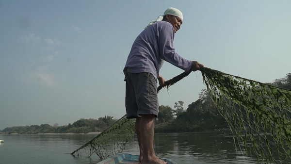 Increased Mekong Algae Growth a Bane for Fishermen