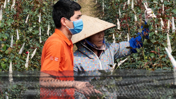 "Coronavirus is ""Death"" for Vietnam's Tet Flower Business"