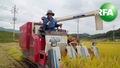 [북한 귀농] 흙에 살어리랏다-탈북귀농인 이향란