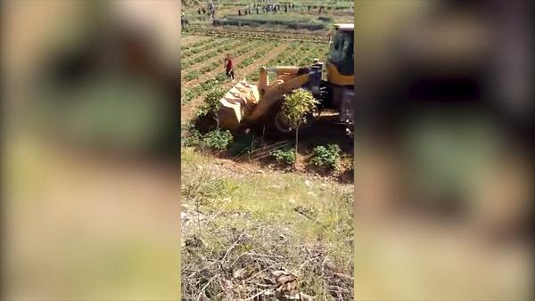 Bulldozer Destroys Crops in China Land Dispute