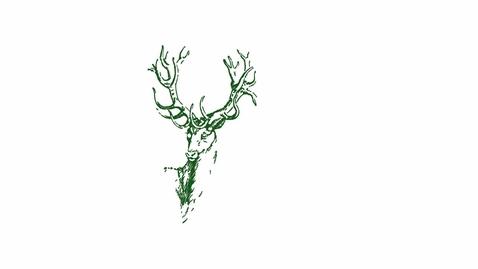 Thumbnail for entry Sylva: Parchment Volume