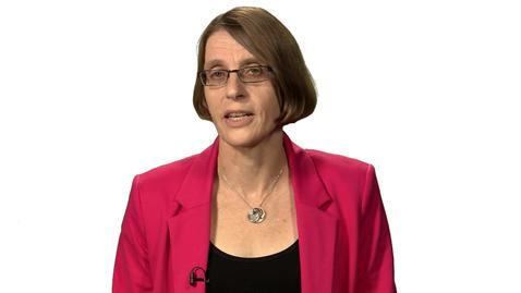 Professor Sue Arrowsmith - Supplier Remedies Presentation