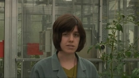 Thumbnail for entry Rebecca Smith - PhD Plant and Crop Sciences