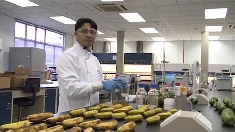 Thumbnail for entry Mehdi Maqbool - PhD Biosciences