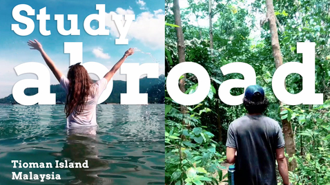 Thumbnail for entry Tropical Biology | Study abroad and travel in Malaysia