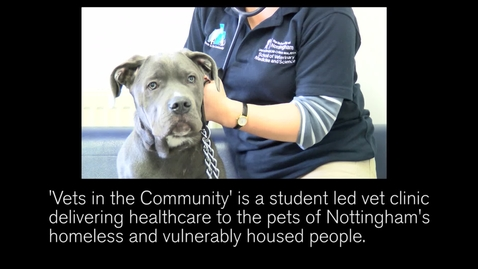 Thumbnail for entry Vets in the Community - how Nottingham vet students help the homeless and their pets