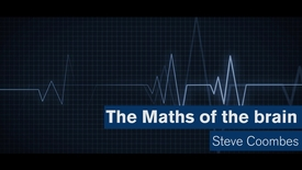 Maths Matters: The maths of the brain