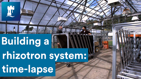 Thumbnail for entry Future Food | building a rhizotron system: time-lapse