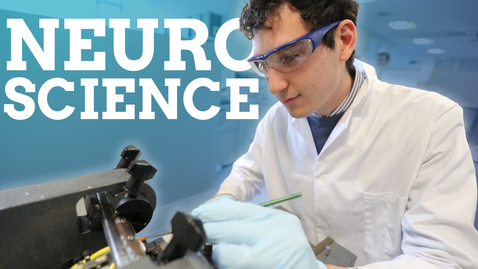 Thumbnail for entry Neuroscience | work experience, projects and being an international student