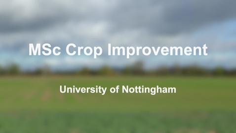 Thumbnail for entry MSc Crop Improvement