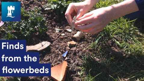 Thumbnail for entry Finds from the flowerbeds