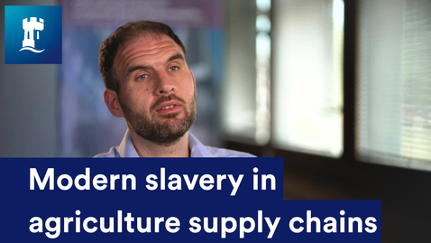 Thumbnail for entry Modern slavery in agriculture supply chains