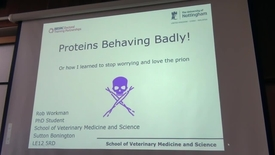 Thumbnail for entry Proteins behaving badly - by Rob Workman