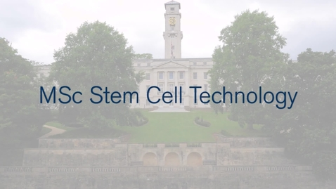 MSc Stem Cell Technology