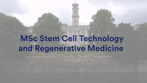 Thumbnail for entry MSc Stem Cell Technology and Regenerative Medicine