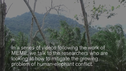 Thumbnail for entry Monitoring human-elephant conflict in Malaysia