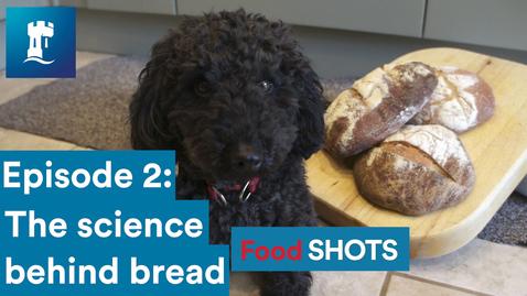Thumbnail for entry FoodSHOTS Episode 2: Bread (Sourdough)