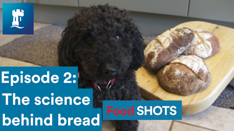 Thumbnail for entry FoodSHOTS Episode 2: Bread (Sourdough)