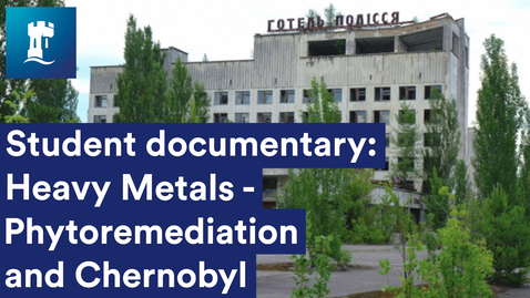Thumbnail for entry Plants for Phytoremediation