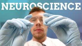 Thumbnail for entry Neuroscience | Australia, research and student life