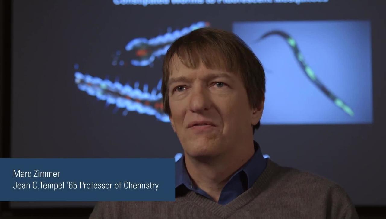 Marc Zimmer - Illuminating Disease