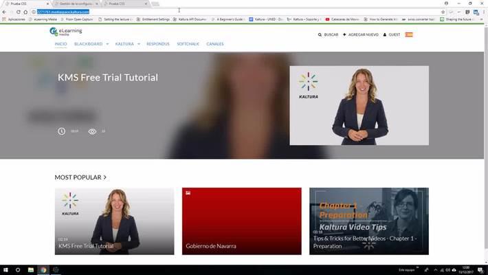 Modifica el aspecto de tu Portal de vídeo con Styling