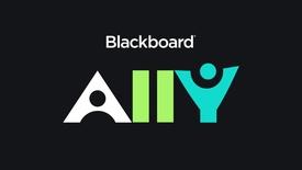 Miniatura para la entrada Video Ally Product Overview