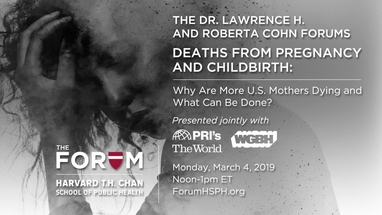 Deaths From Pregnancy And Childbirth The Forum At Harvard T H