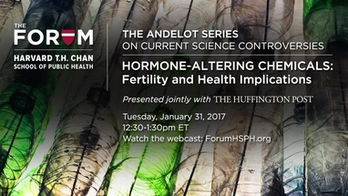 Little Things Matter Exposes Big Threat To Childrens Huffpost >> Hormone Altering Chemicals The Forum At Harvard T H Chan School