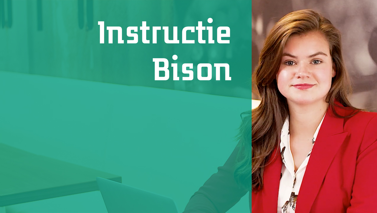 Instructie Bison