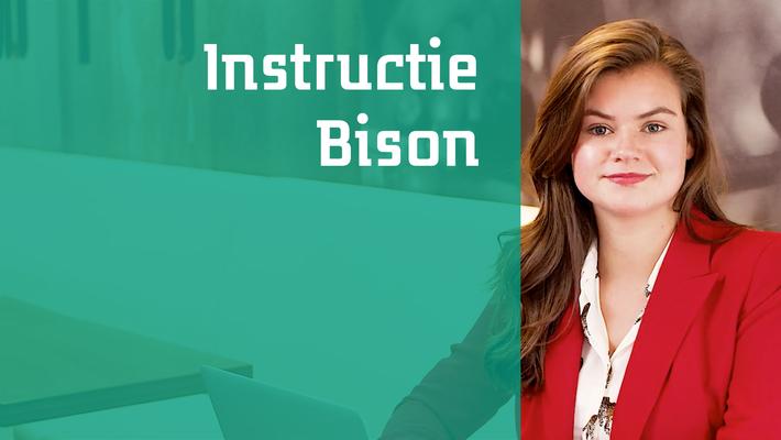 Instructie Bison