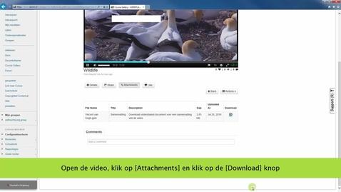 Thumbnail for entry Een bijlage aan je video toevoegen