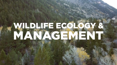 Thumbnail for entry Wildlife Ecology & Management students get a hands-on education
