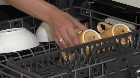 Thumbnail for entry Demonstrating the Organizational Capabilities of Whirlpool® Dishwashers