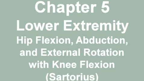 Thumbnail for entry MMT_hip_flexion-sartorius
