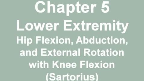 Thumbnail for entry MMT_hip_flexion-sartorius