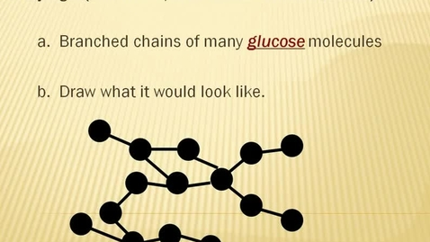 Thumbnail for entry Polysaccharide Glycogen