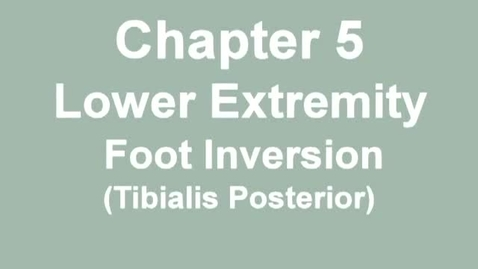 Thumbnail for entry MMT_ankle_inversion